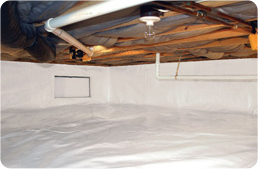 crawl-space-dirt-floor-mould-after