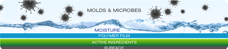 Mold Spores and Microbes, Moisture, Polymer Film, Active Mold Removing Ingredients and Surface